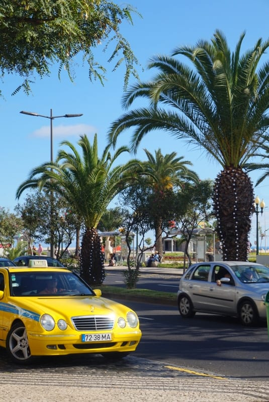 Madeira in December: Christmas and New Year's Eve in Madeira Island, Portugal - practical info on weather, decorations, food, traditions.. #madeira #madeiraisland