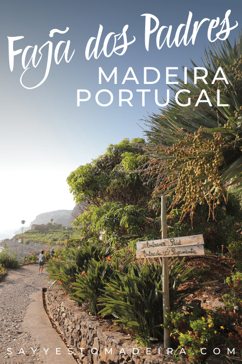 Faja dos Padres - Must See places on Madeira Island