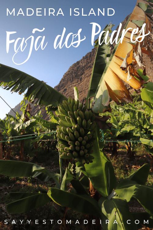 Faja dos Padres - Madeira Island Hidden Gems - Portugal