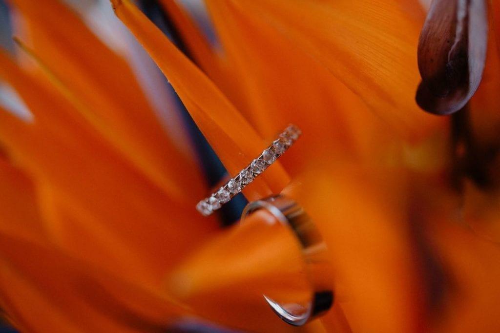 Tropical wedding - Bird of paradise flower - strelitzia flower wedding bouquet #tropicalwedding #strelitzia #birdofparadise #madeira Tropikalny ślub - bukiet ze strelizji