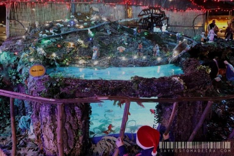 Christmas attractions for kids in Madeira: Nativity Scene with an aquarium in the Funchal Marina | Świąteczne atrakcje dla dzieci na Maderze: Szopka z akwarium przy porcie w Funchal