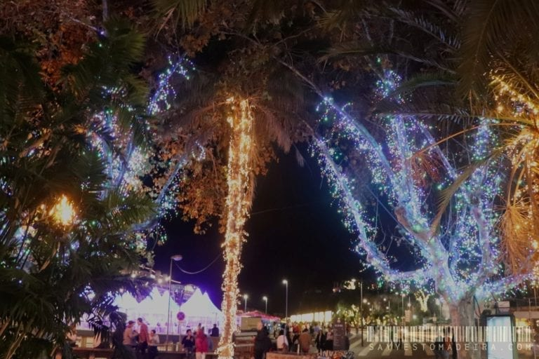 Christmas in Europe - Christmas light in Funchal, Madeira, Portugal | Gdzie na Boże Narodzenie w Europie - Ozdoby świąteczne w Funchal na Maderze