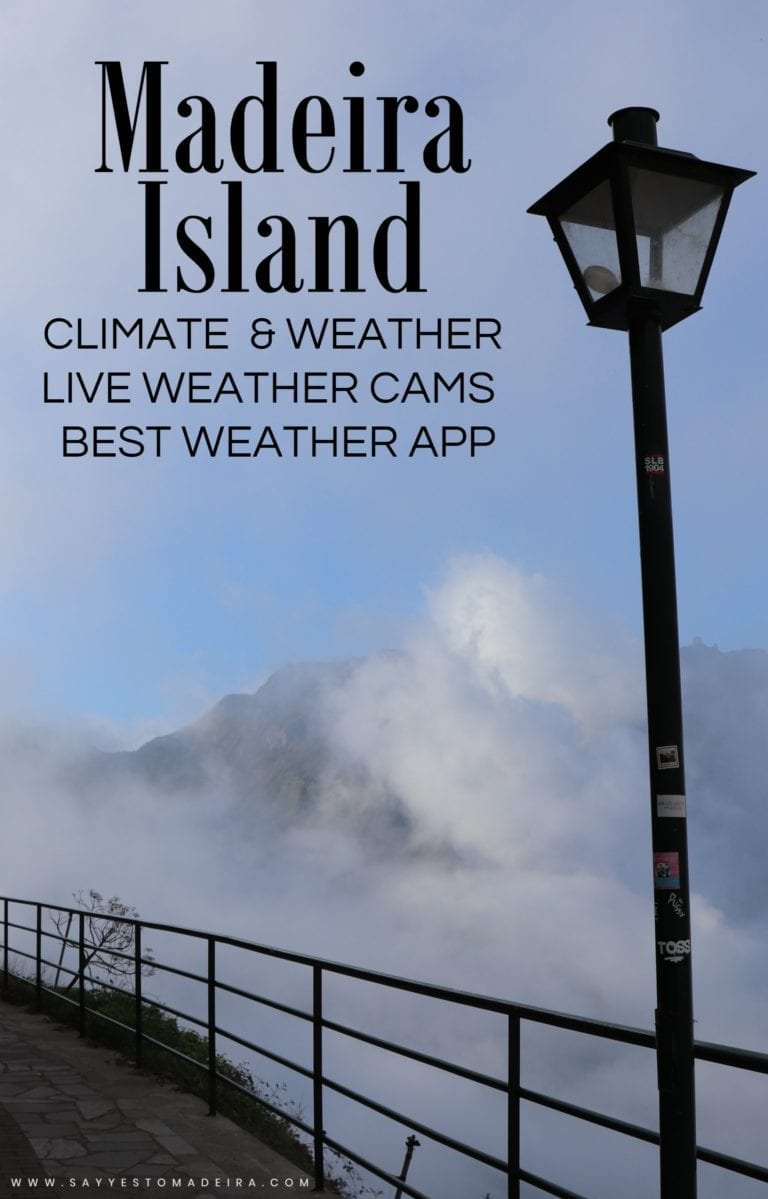 Weather in Madeira, Madeira's climate, weather webcams in Madeira, best weather app | Pogoda na Maderze, klimat Madery, pogodowe kamery na Maderze, najlepsza aplikacja pogodowa na Maderze