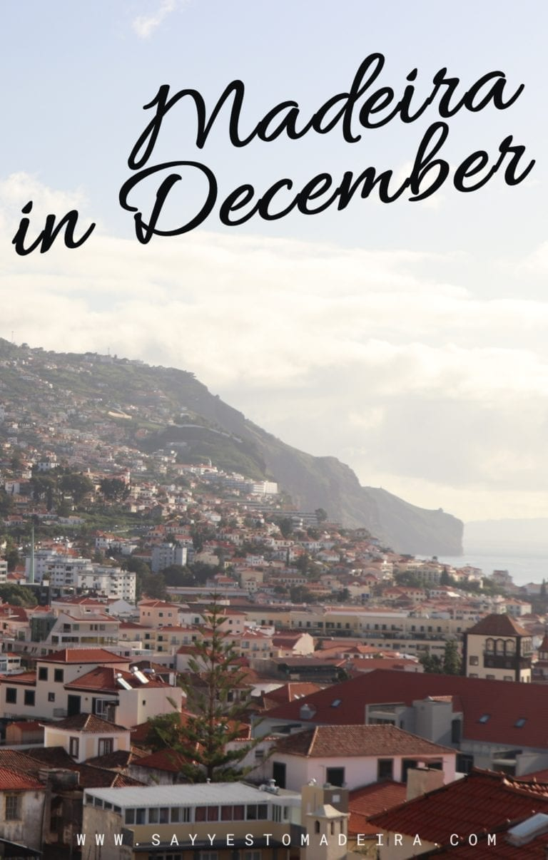 Weather in Madeira, Portugal, in December | Pogoda na Maderze zimą