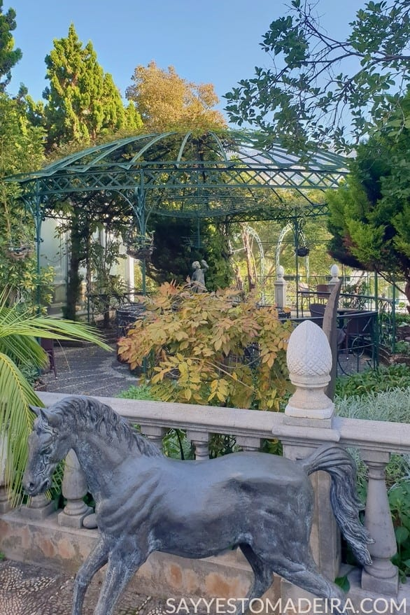 Funchal Gems: Best garden cafes in Funchal - Universo de Memorias Joao Carlos Abreu #funchal #madeira #portugal Polecane kawiarnie na Maderze: Kawiarnia w ogrodzie muzeum Universo de Memorias Joao Carlos Abreu w Funchal na Maderze