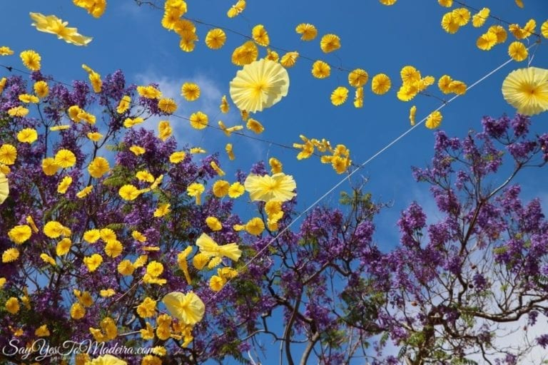 Flower Festival Funchal Madeira Portugal (3)