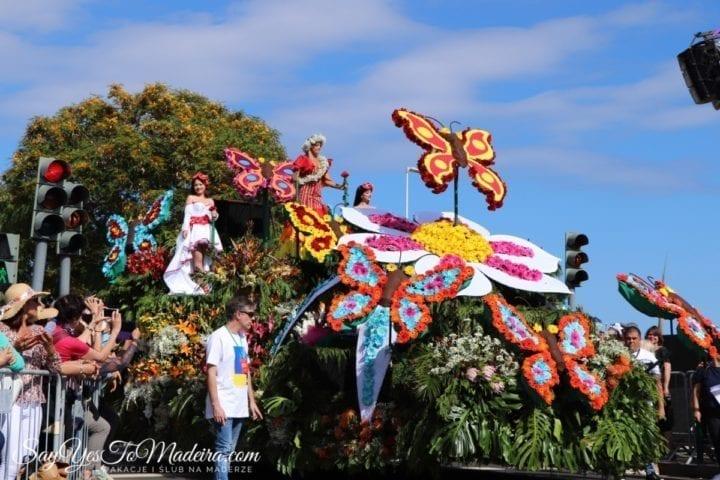 'Para falar das flores: A exuberância colorida do cortejo das flores' – Associação Tramas e Enredos
