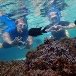 Snorkeling Porto Santo