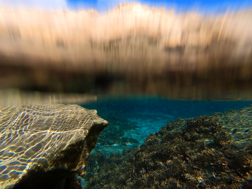 Where to snorkel in Europe - Snorkeling in Madeira and Porto Santo, Portugal