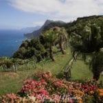 Madeira Island hotel with a beautiful garden - Quinta de Furao Madeira review - Hotele z pięknym ogrodem na Maderze hotel Quinta do Furao recenzje, opinie, zdjęcia