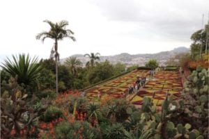 Madeira News Blog & Travel Guide - Best attractions of Madeira Island and Porto Santo, Portugal