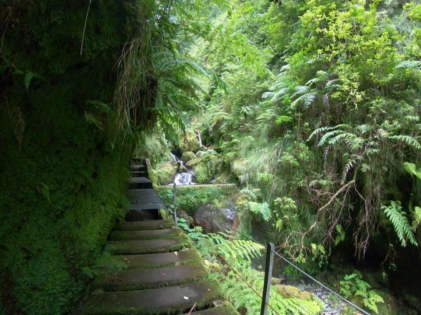 Best levada walks Madeira Island: Levada Faja do Rodrigues. Sao Vicente Madeira. Najpiękniejsze lewady na Maderze. Szlaki na północy Madery